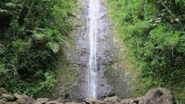マノアの滝【マイナスイオンたっぷり!ワイキキから最も近いトレッキングコース】