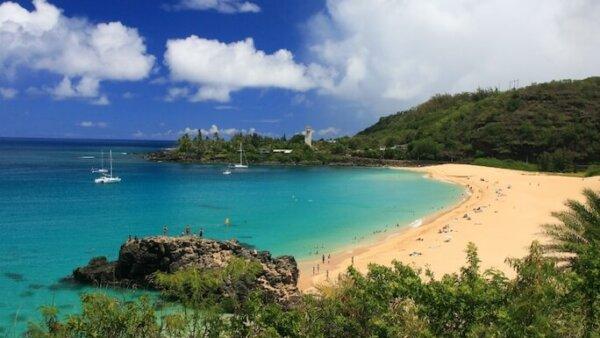 ワイメアビーチ【ハワイNo.1の透明度と10m以上の超ビッグウェーブ】